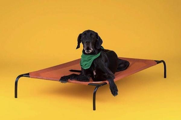 CPETBEDL, lit orthopédique pour chiens -  surélevé