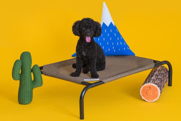 CPETBEDS, lit surélevé pour chien -  lit sur pieds pour chien